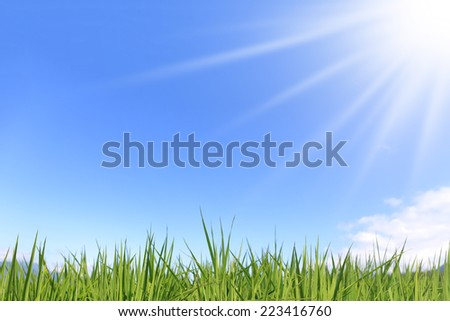 fresh green grass with bright blue sky - stock photo