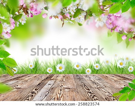 Fresh green grass with wooden desk. - stock photo