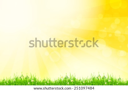 Fresh green grass with yellow bokeh and sunlight and flowers. Beauty natural background - stock photo