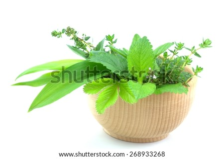 Fresh green herbs in wooden bowl - stock photo