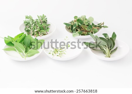 Fresh green herbs isolated over white  - stock photo