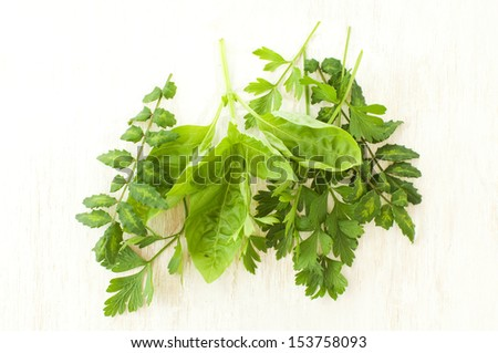 fresh green herbs on a wooden board