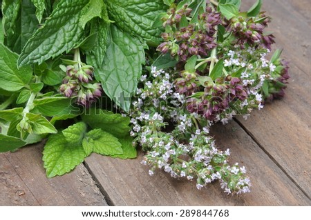 Fresh green herbs on old wooden table - stock photo
