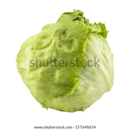 Fresh Green Iceberg lettuce . (with clipping work path) - stock photo