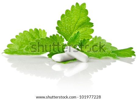 fresh green leaf of melissa with chewing gum isolated on white background