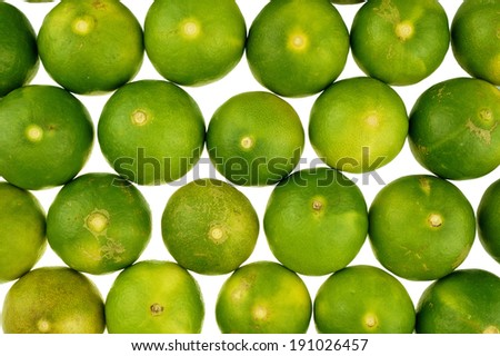 Fresh green lemon place as texture isolated on white background.
