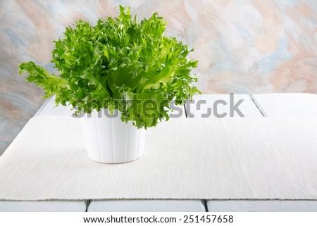 Fresh green lettuce in a white pot. - stock photo