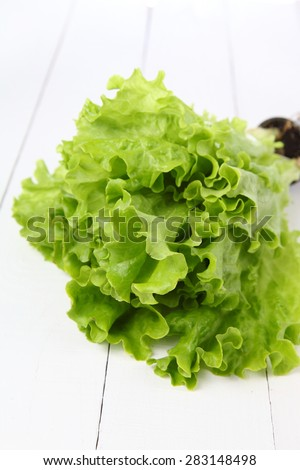 Fresh green lettuce on a wooden table - stock photo