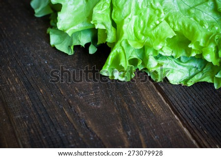 Fresh green lettuce  on the dark wooden table. Selective focus - stock photo