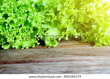 fresh green lettuce salad selective focus on wooden background  - stock photo