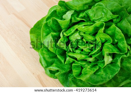 fresh green lettuce top on wooden table - stock photo