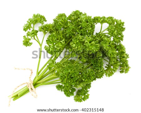 fresh green parsley isolated on white background - stock photo