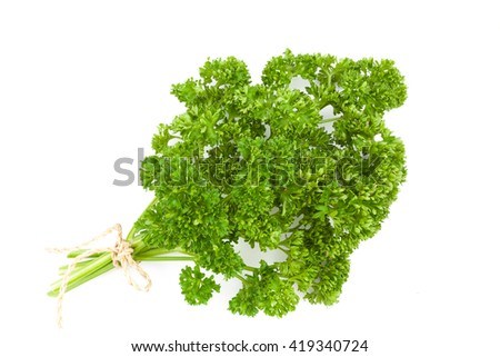 fresh green parsley isolated on white background