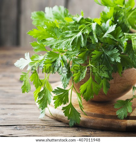 Fresh green parsley on the wooden table, selective focus and square image - stock photo