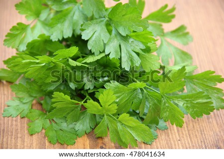 Fresh green parsley on wooden old background