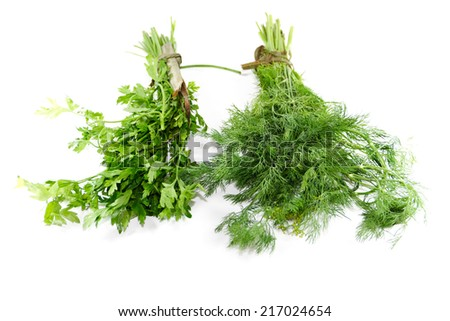 Fresh Green Parsley with Green Dill