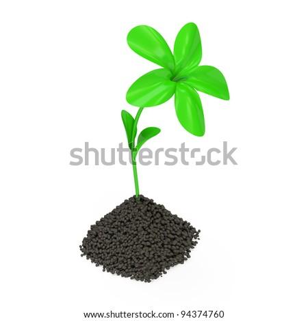 Fresh Green Plant Growing in Soil - stock photo