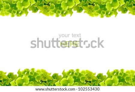Fresh Green Salad frame