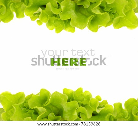 Fresh Green Salad frame - stock photo