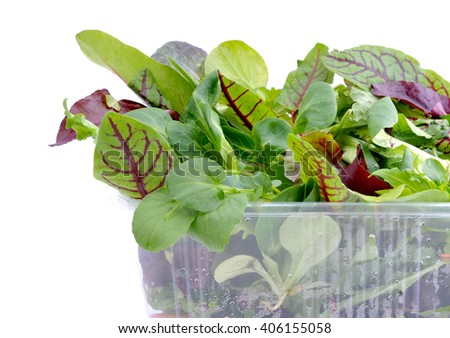 Fresh green salad mix in plastic packaging. - stock photo
