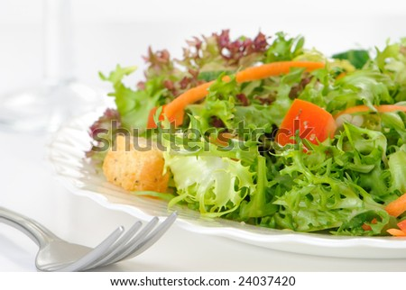 Fresh green salad on a plate - diet concept