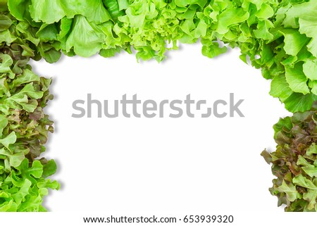 Fresh green salad vegetables frame on white background with copy space