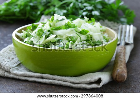 fresh green salad with cabbage (coleslaw), cucumber and parsley - healthy food - stock photo