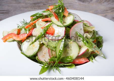 Fresh green salad with cucumber and radish