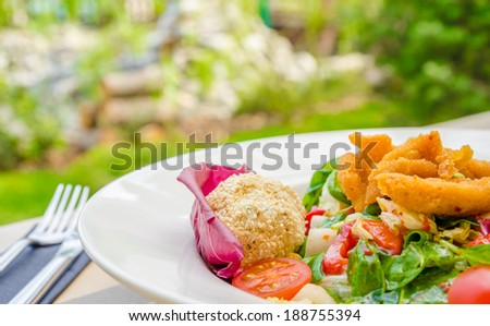 Fresh green salad with lettuce cabbage chicken and mozzarella balls on a stylish white plate at a garden terrace with a green background - stock photo