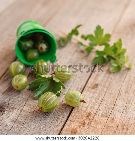 fresh green tasty gooseberry on vintage wooden background - stock photo