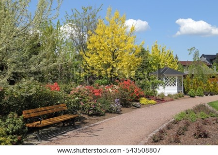 Fresh green trees and shrubs in the spring garden.