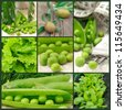 fresh green vegetables collage - stock photo