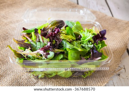 Fresh greens in spring mix salad container - stock photo