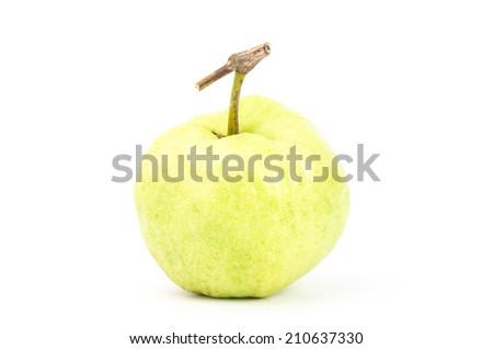 Fresh guava (tropical fruit) on white background