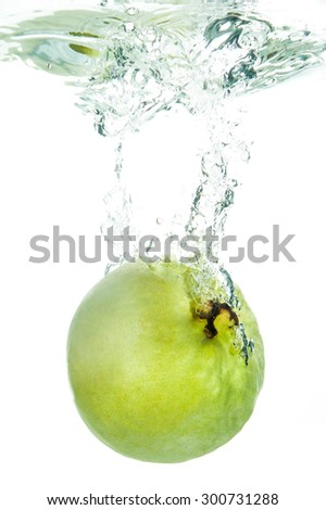 fresh guava with water splash on white