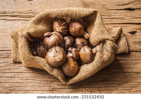 Fresh Harvest Mushroom in Vintage Burlap Bag on Wood Table Background, Concept and Idea of Food Art Cook Country Farm Rustic Still life Style. - stock photo