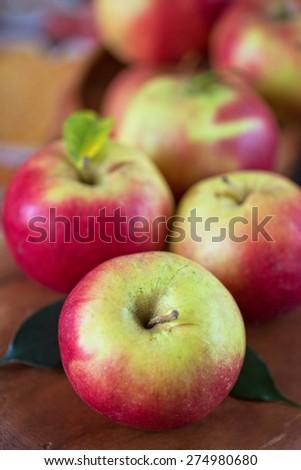 Fresh harvest of ripe apples. Nature fruit concept. - stock photo