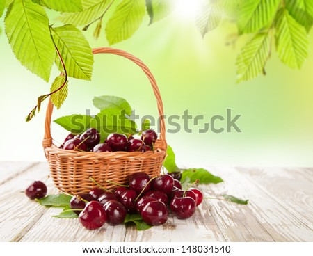 Fresh harvested cherries in basket - stock photo