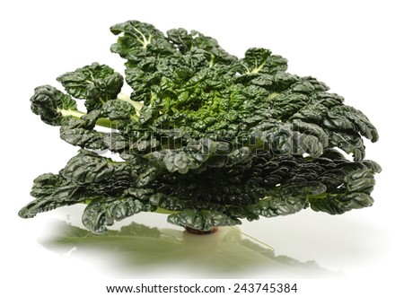 Fresh harvested Tah Tsai lettuce isolated on white. Tah Tsai or (Tatsoi) a commly used green leaf vegetable in Chinese and oriental dishes. - stock photo