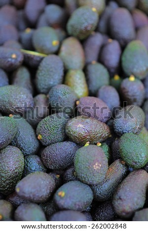 Fresh healthy avocado on Paris farmer agricultural market - stock photo