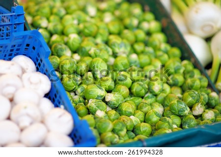 Fresh healthy bio brussels sprout and fungus on Paris farmer agricultural market - stock photo
