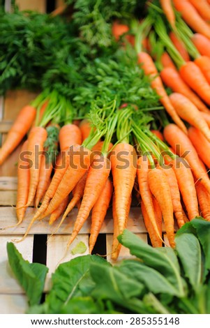 Fresh healthy bio carrots and salad on Paris farmer agricultural market  - stock photo