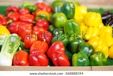 Fresh healthy bio red, green and yellow paprika on Paris farmer agricultural market  - stock photo
