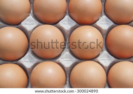 Fresh hen eggs - stock photo