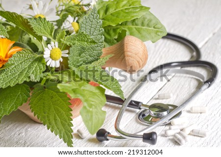 Fresh herb and stethoscope alternative medicine concept - stock photo