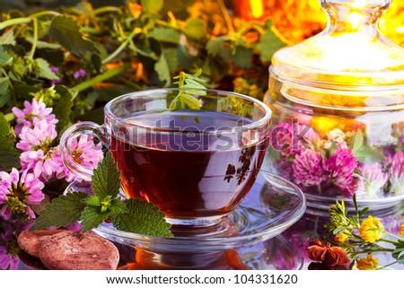 Fresh herbal tea - stock photo