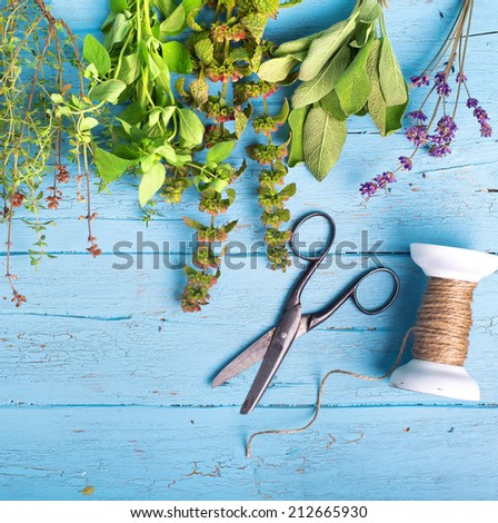 Fresh herbs and scissors and knitting over blue wooden background  - stock photo