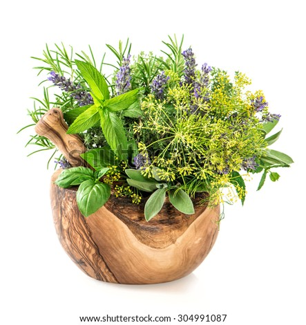 Fresh herbs dill, rosemary, basil, mint, sage, lavender. Healthy food ingredients