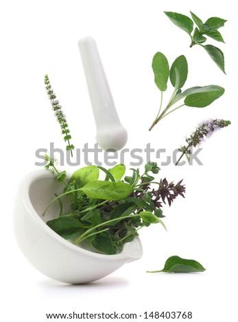 Fresh herbs falling into a porcelain mortar - stock photo