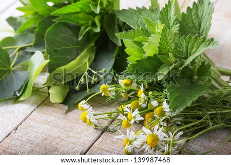 Fresh herbs for tea. Melissa, linden, chamomile, peppermint. Selective focus. - stock photo